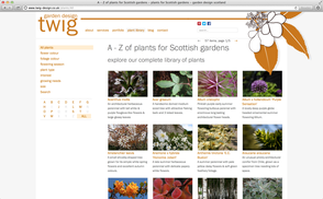 Twig Garden Design Portfolio fiennesorg